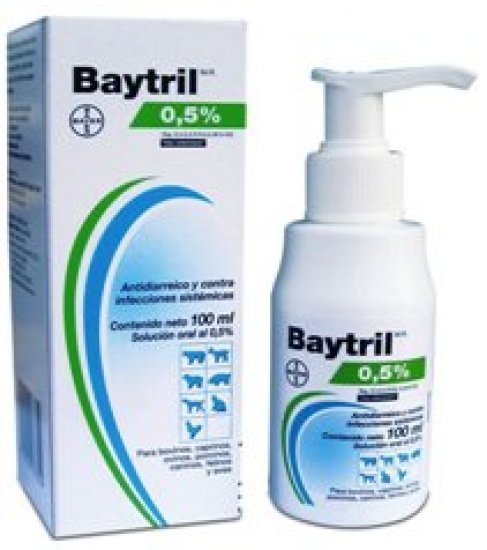 Oral Baytril 0.5% - Enrofloxacin 50 ml.