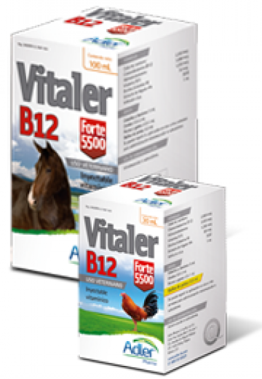 Vitaler B12 Forte 5500 100 ML - Extract of liver, and Vitamins