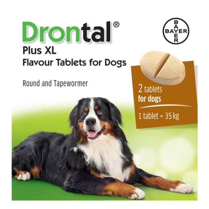 Drontal Plus Flavour Praziquantel Pyrantel Pamoate And Febantel 35kg Deworming Petmedsmex